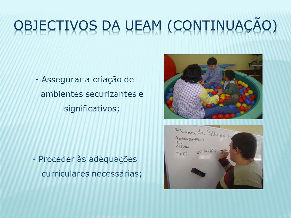 Objectivos da UEAM (continuação)