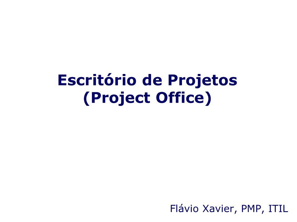 Escritório de Projetos (Project Office)