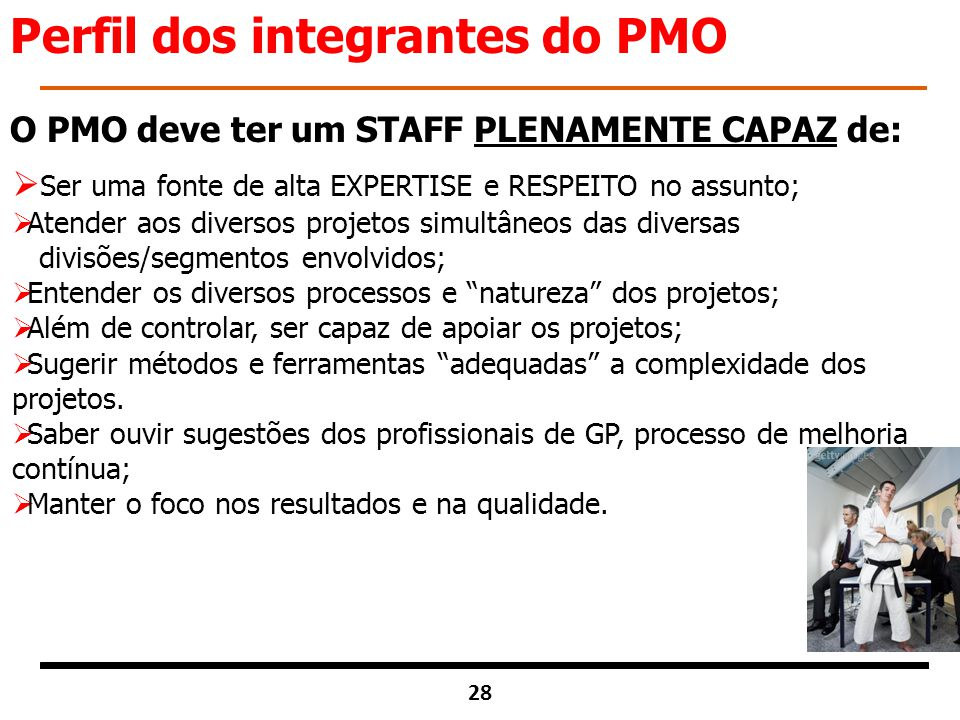 Perfil dos integrantes do PMO