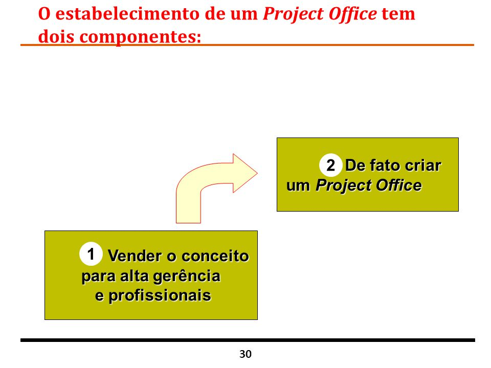 O estabelecimento de um Project Office tem dois componentes: