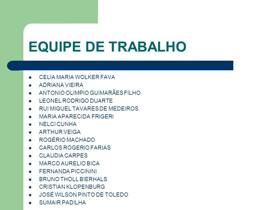 EQUIPE DE TRABALHO CELIA MARIA WOLKER FAVA ADRIANA VIEIRA