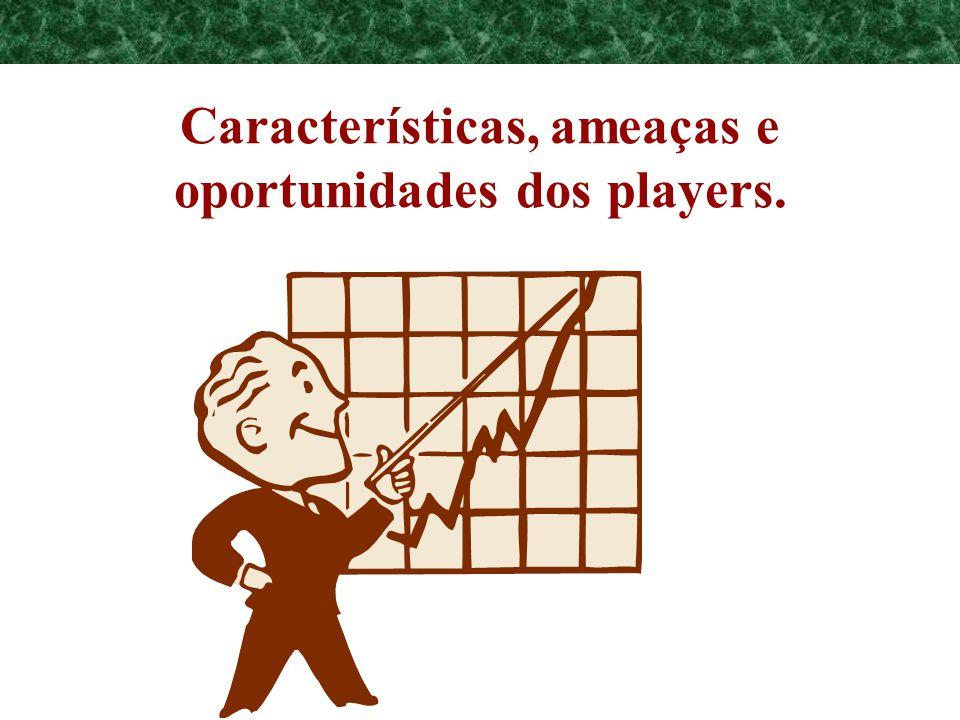 Características, ameaças e oportunidades dos players.