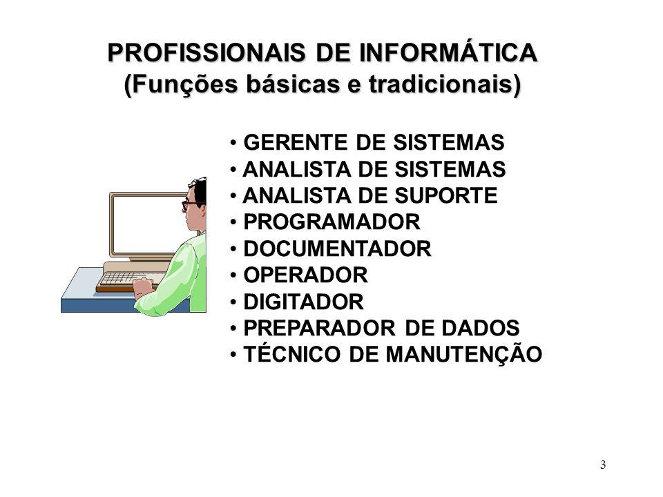 PROFISSIONAIS DE INFORMÁTICA (Funções básicas e tradicionais)