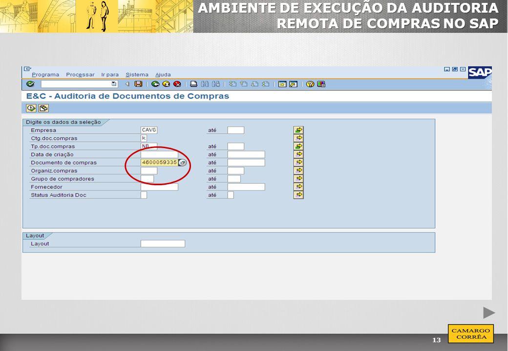 AMBIENTE DE EXECUÇÃO DA AUDITORIA REMOTA DE COMPRAS NO SAP