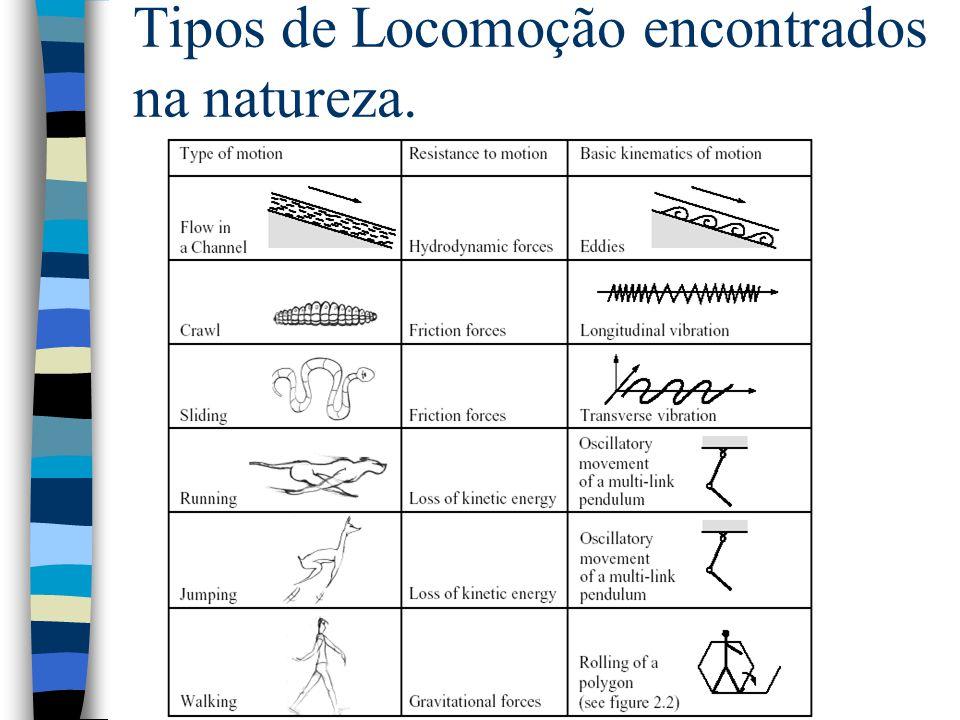 Tipos de Locomoção encontrados na natureza.