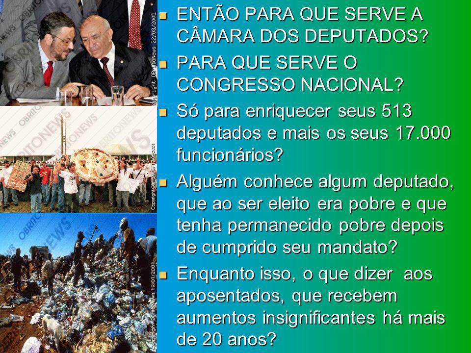 ENTÃO PARA QUE SERVE A CÂMARA DOS DEPUTADOS