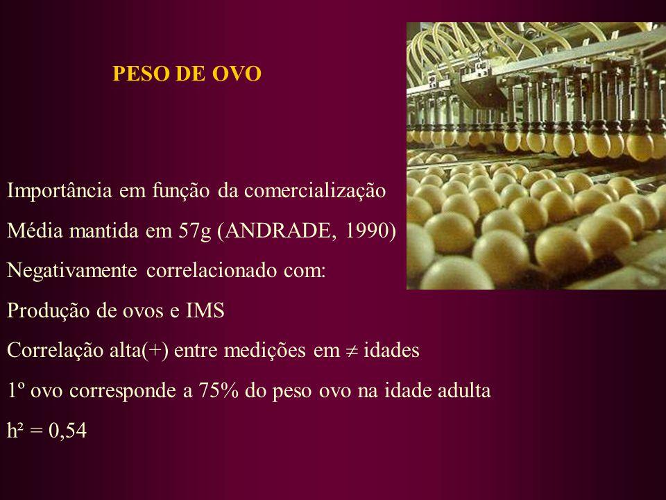 PESO DE OVO Importância em função da comercialização. Média mantida em 57g (ANDRADE, 1990) Negativamente correlacionado com: