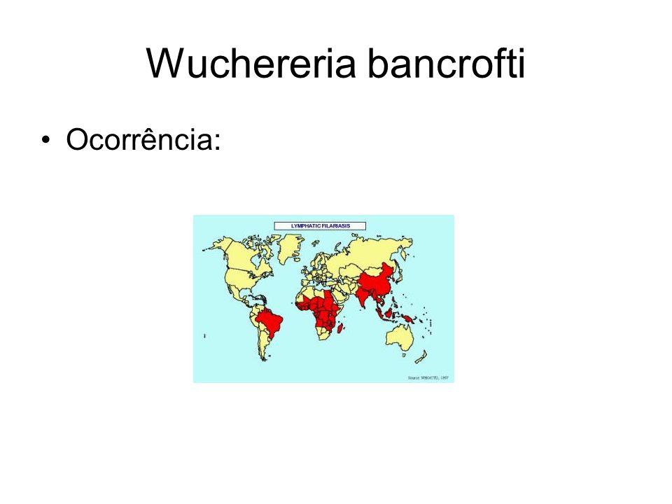 Wuchereria bancrofti Ocorrência: