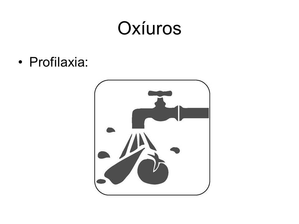 Oxíuros Profilaxia: