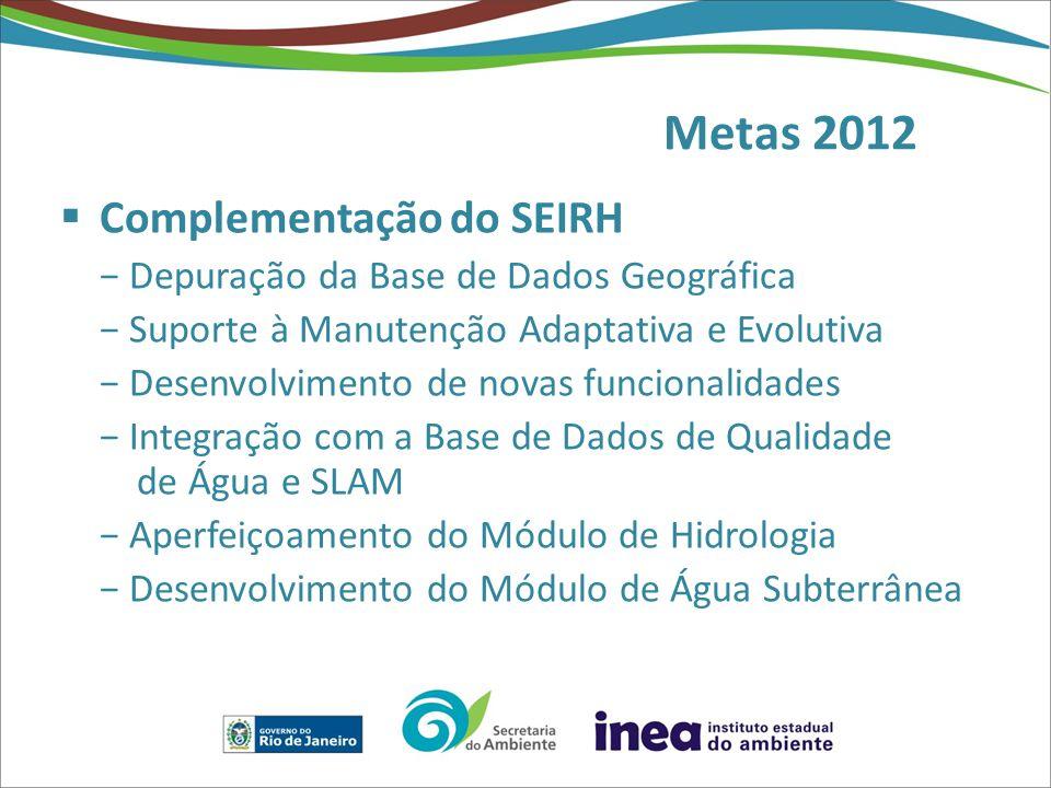 Metas 2012 Complementação do SEIRH