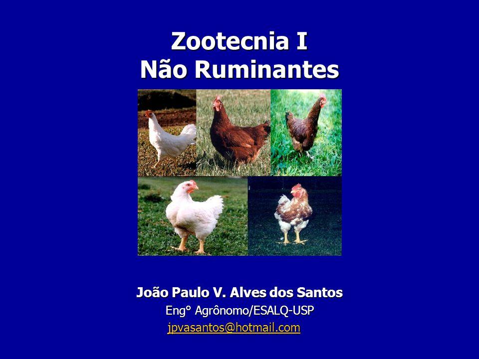 Zootecnia I Não Ruminantes