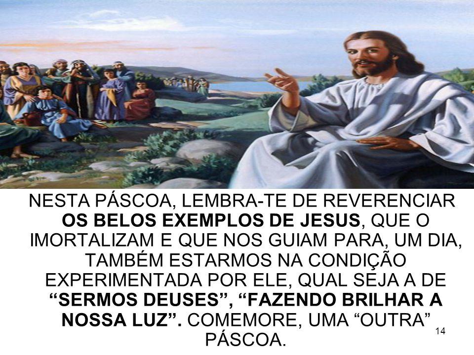 NESTA PÁSCOA, LEMBRA-TE DE REVERENCIAR OS BELOS EXEMPLOS DE JESUS, QUE O IMORTALIZAM E QUE NOS GUIAM PARA, UM DIA, TAMBÉM ESTARMOS NA CONDIÇÃO EXPERIMENTADA POR ELE, QUAL SEJA A DE SERMOS DEUSES , FAZENDO BRILHAR A NOSSA LUZ .