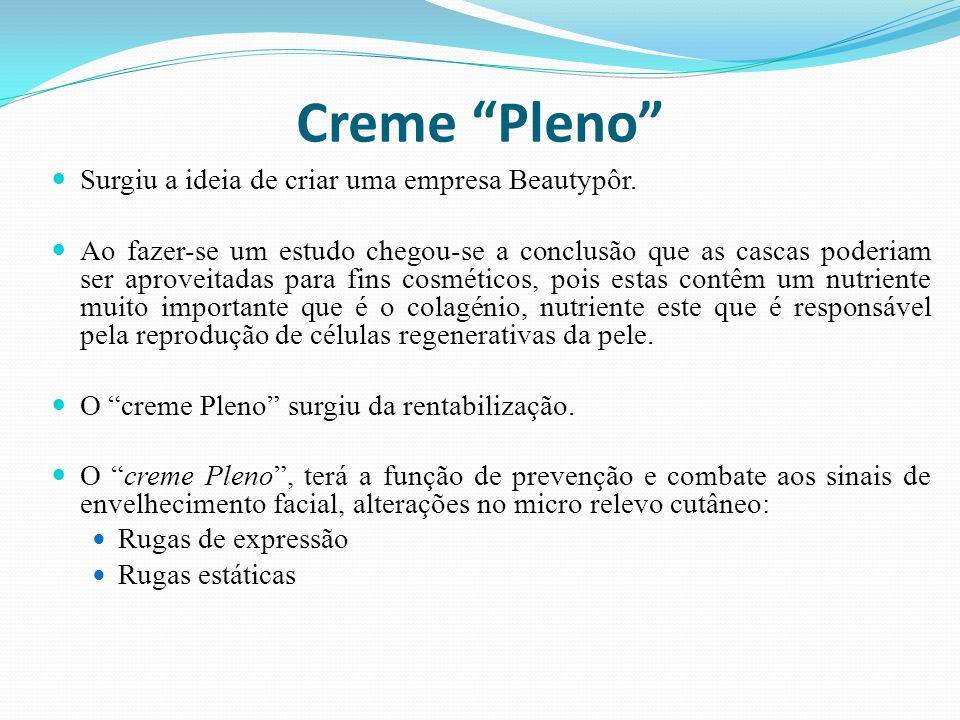 Creme Pleno Surgiu a ideia de criar uma empresa Beautypôr.