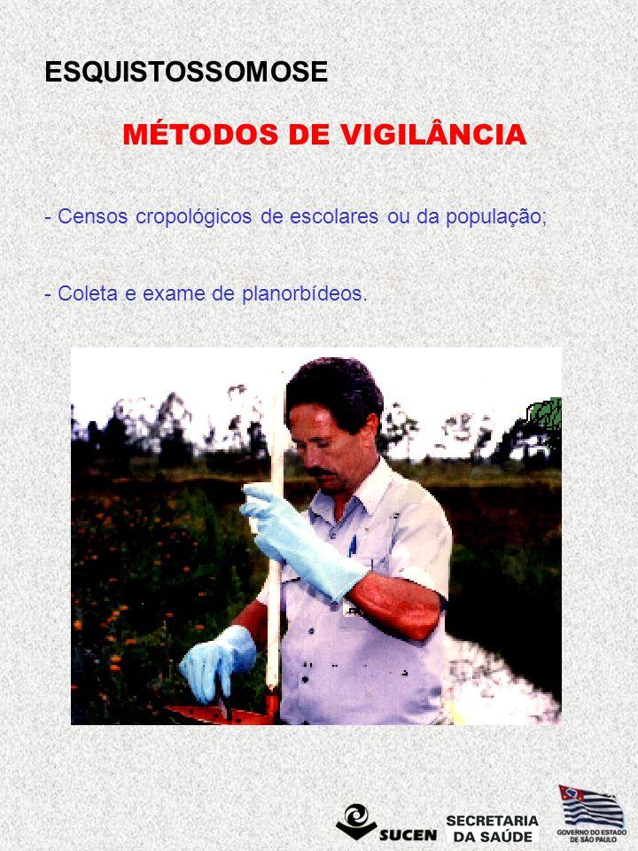 MÉTODOS DE VIGILÂNCIA Censos cropológicos de escolares ou da população; - Coleta e exame de planorbídeos.