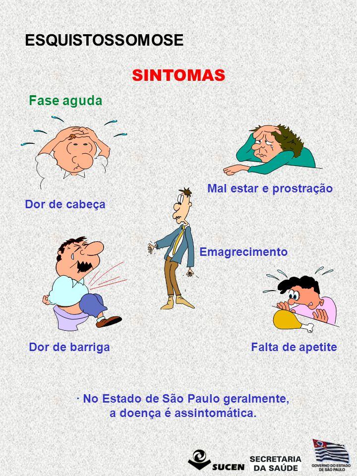 · No Estado de São Paulo geralmente, a doença é assintomática.