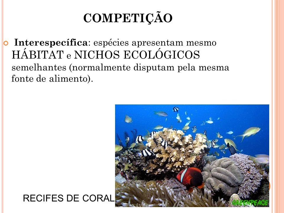 COMPETIÇÃO Interespecífica: espécies apresentam mesmo HÁBITAT e NICHOS ECOLÓGICOS semelhantes (normalmente disputam pela mesma fonte de alimento).