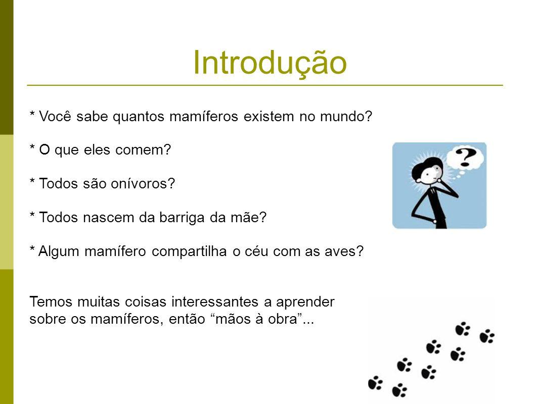 Introdução * Você sabe quantos mamíferos existem no mundo