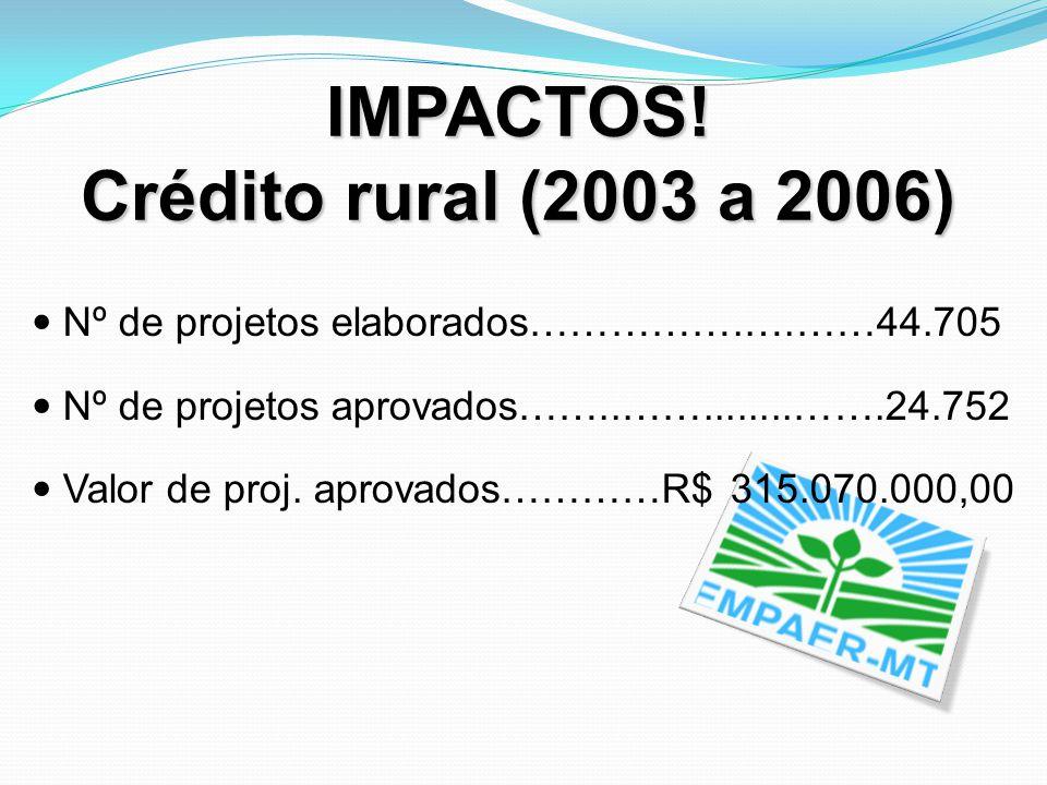 IMPACTOS! Crédito rural (2003 a 2006)