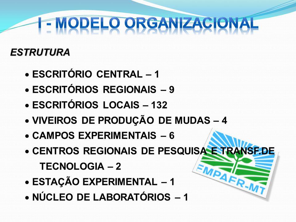 I - MODELO ORGANIZACIONAL