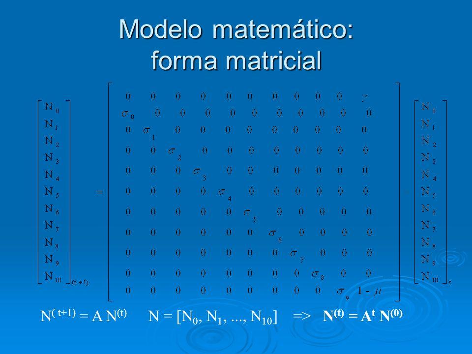 Modelo matemático: forma matricial