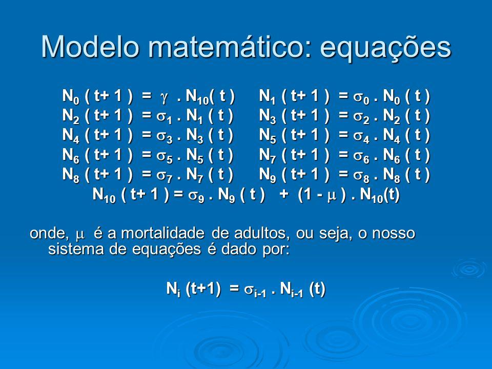Modelo matemático: equações