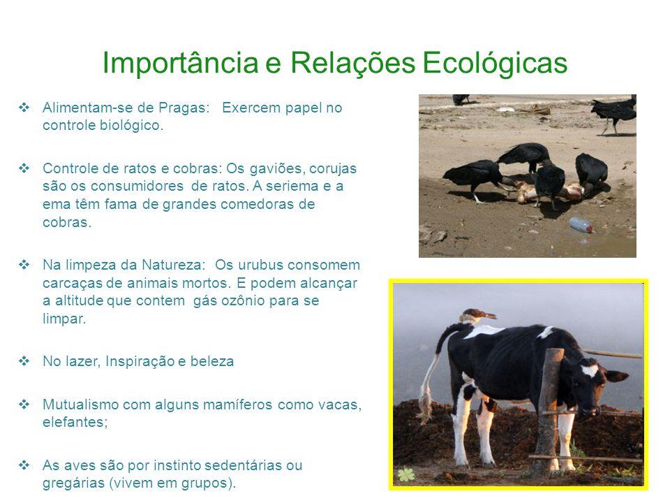Importância e Relações Ecológicas