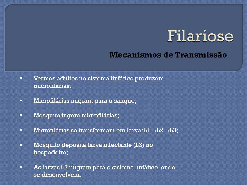 Mecanismos de Transmissão