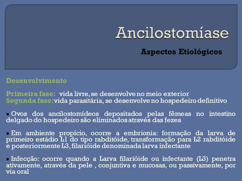 Ancilostomíase Aspectos Etiológicos Desenvolvimento
