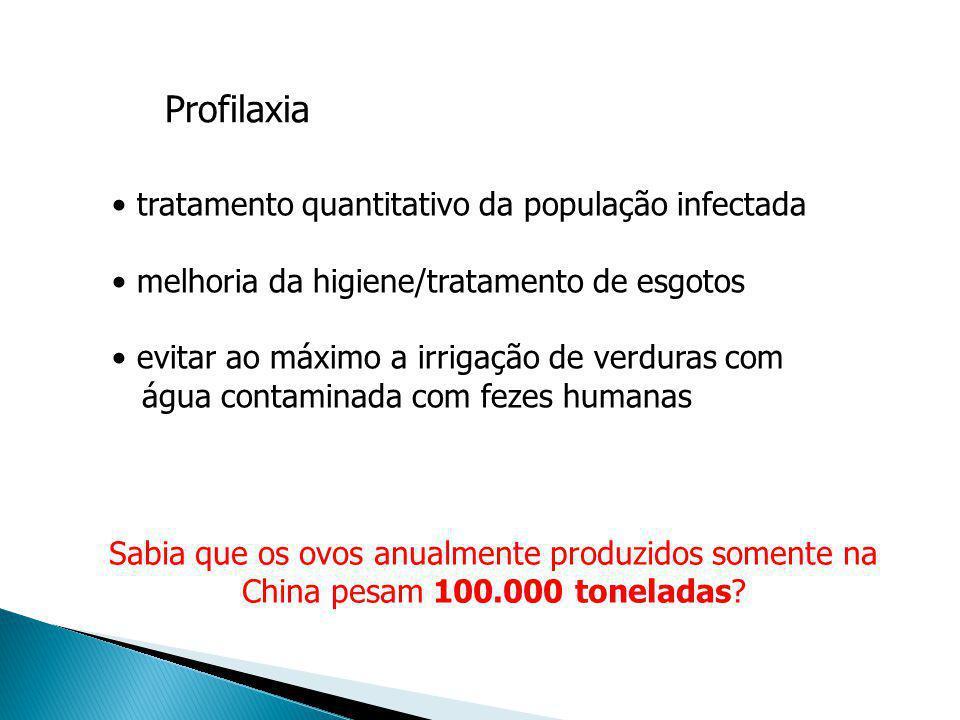 Profilaxia tratamento quantitativo da população infectada