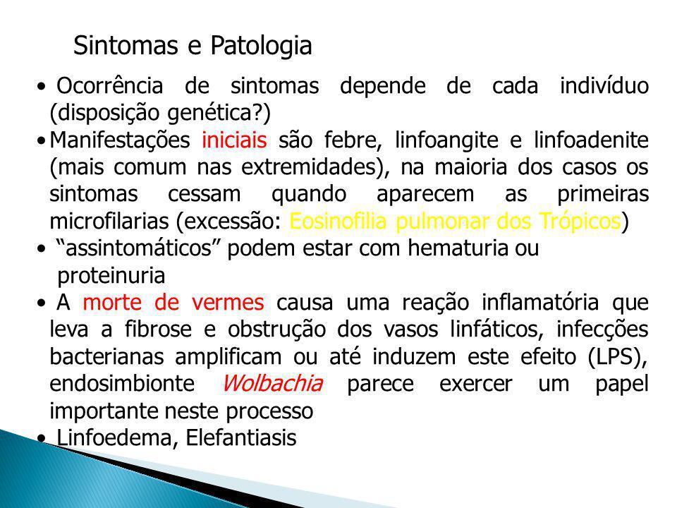 Sintomas e Patologia Ocorrência de sintomas depende de cada indivíduo (disposição genética )