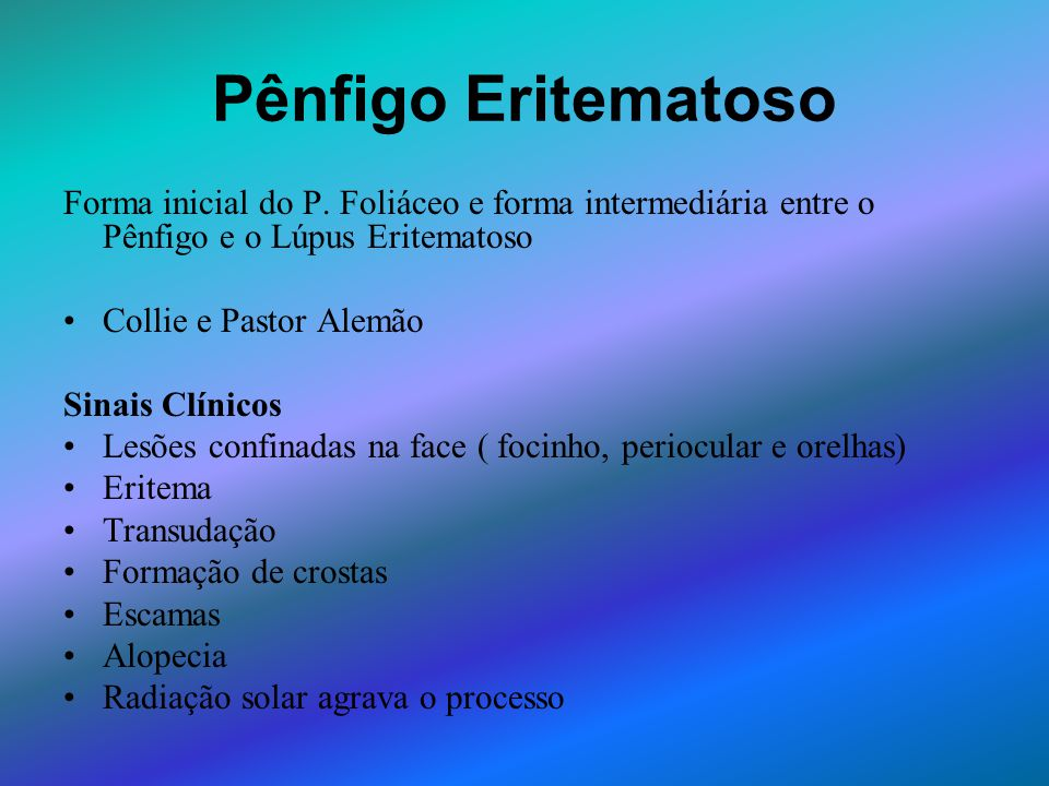 Pênfigo Eritematoso Forma inicial do P. Foliáceo e forma intermediária entre o Pênfigo e o Lúpus Eritematoso.