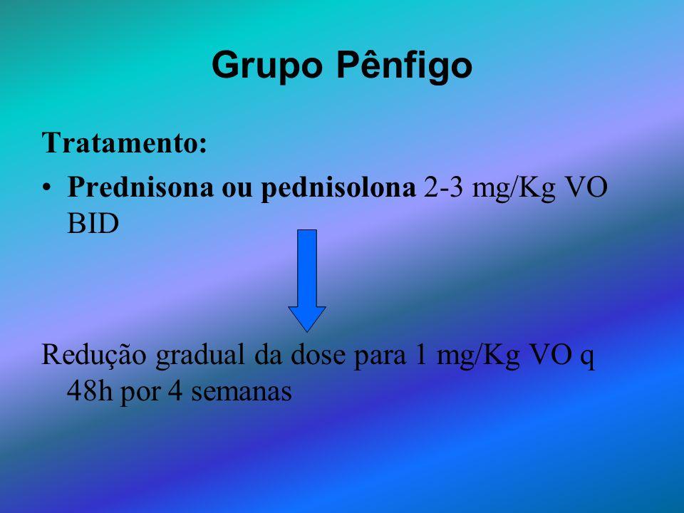 Grupo Pênfigo Tratamento: Prednisona ou pednisolona 2-3 mg/Kg VO BID