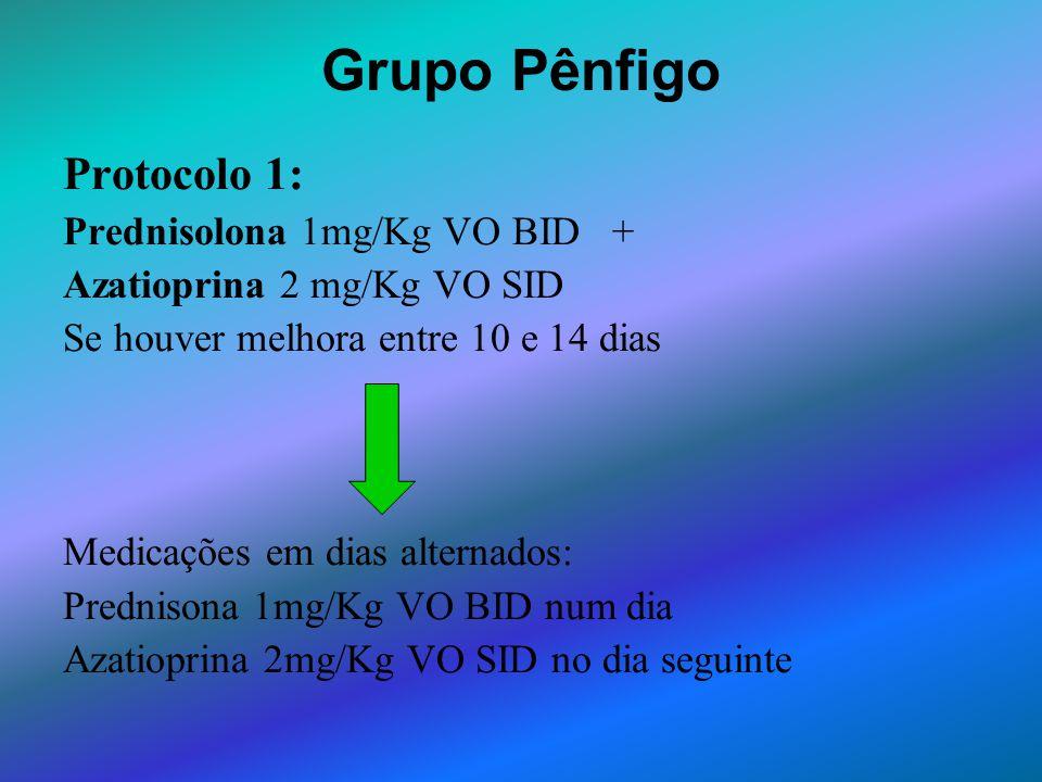 Grupo Pênfigo Protocolo 1: Prednisolona 1mg/Kg VO BID +