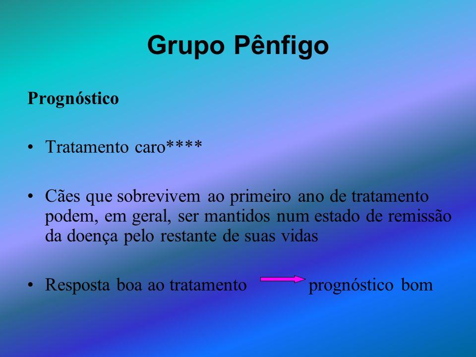 Grupo Pênfigo Prognóstico Tratamento caro****