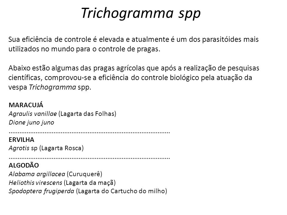Trichogramma spp Sua eficiência de controle é elevada e atualmente é um dos parasitóides mais utilizados no mundo para o controle de pragas.