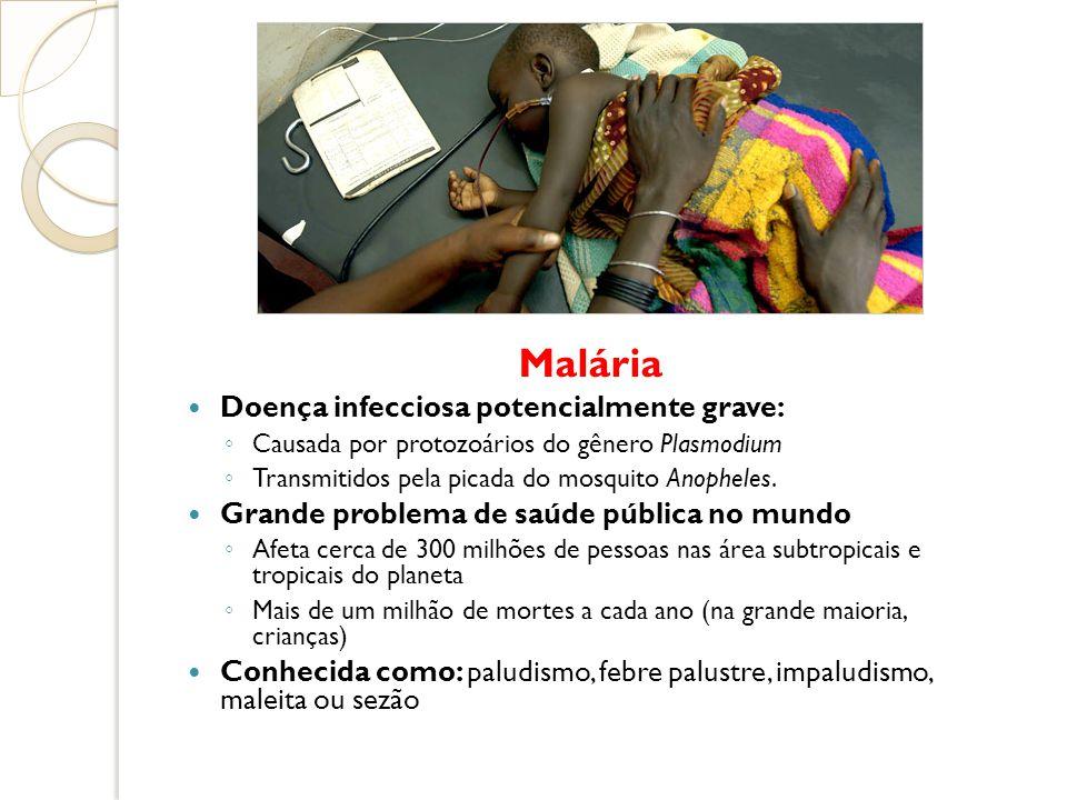 Malária Doença infecciosa potencialmente grave:
