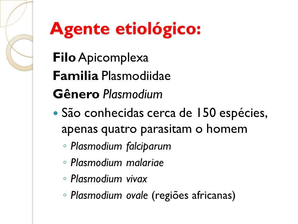 Agente etiológico: Filo Apicomplexa Familia Plasmodiidae