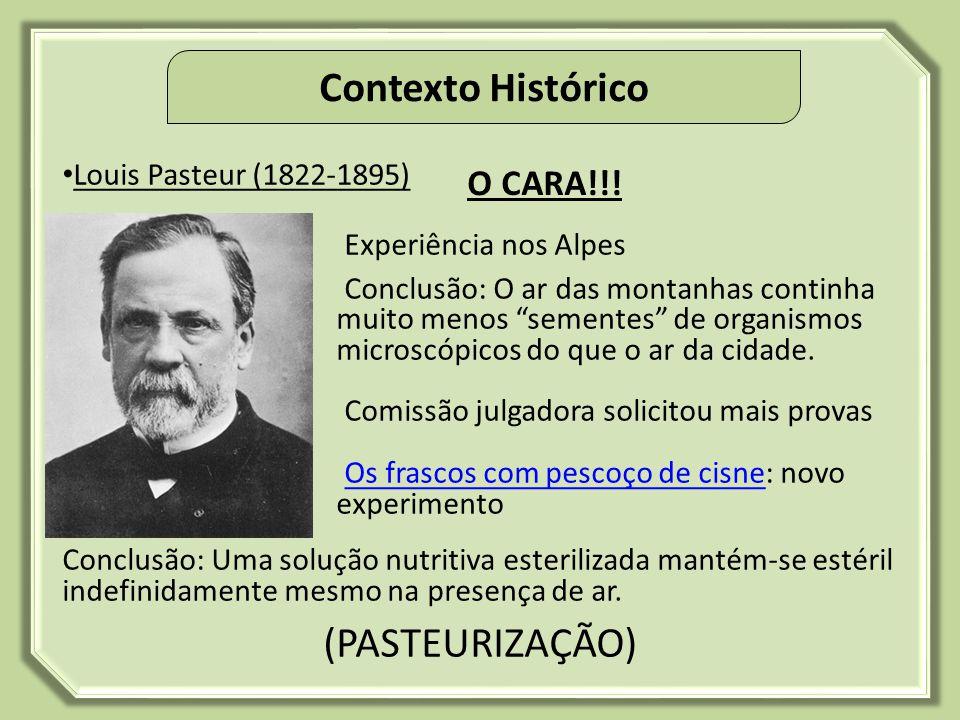 Contexto Histórico (PASTEURIZAÇÃO) O CARA!!! Louis Pasteur (1822-1895)
