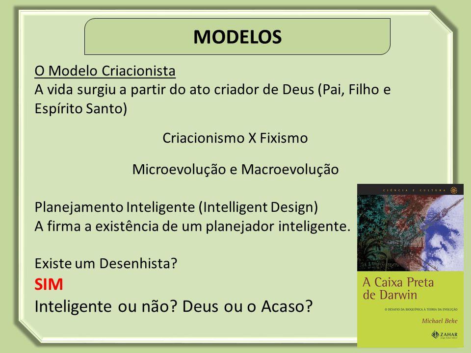 MODELOS SIM Inteligente ou não Deus ou o Acaso O Modelo Criacionista