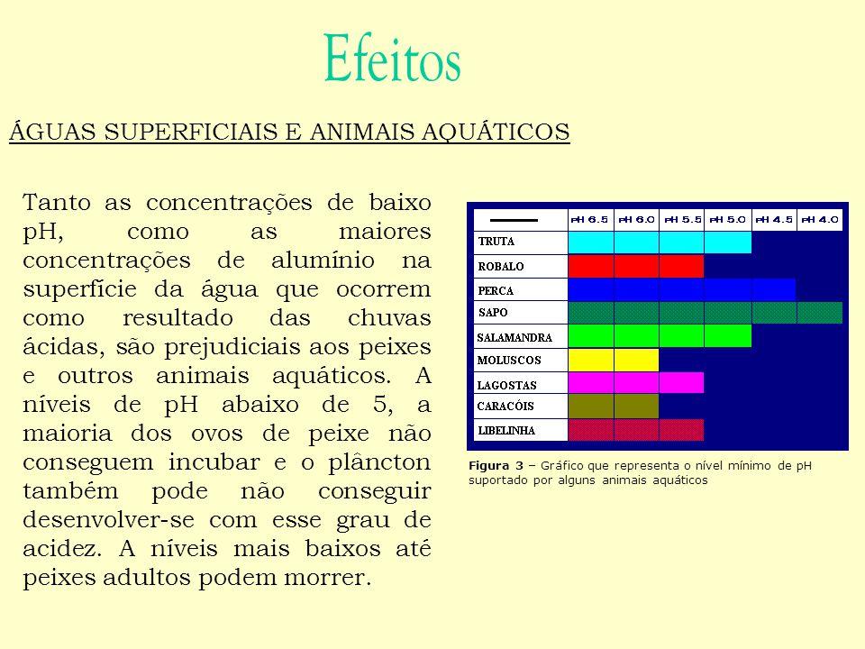 Efeitos ÁGUAS SUPERFICIAIS E ANIMAIS AQUÁTICOS