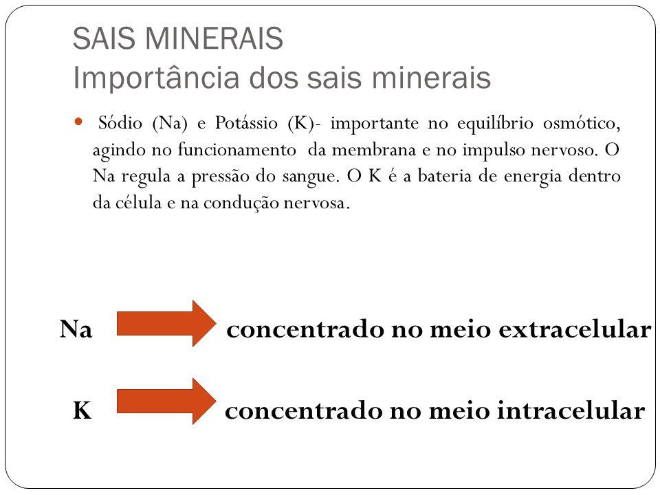 SAIS MINERAIS Importância dos sais minerais