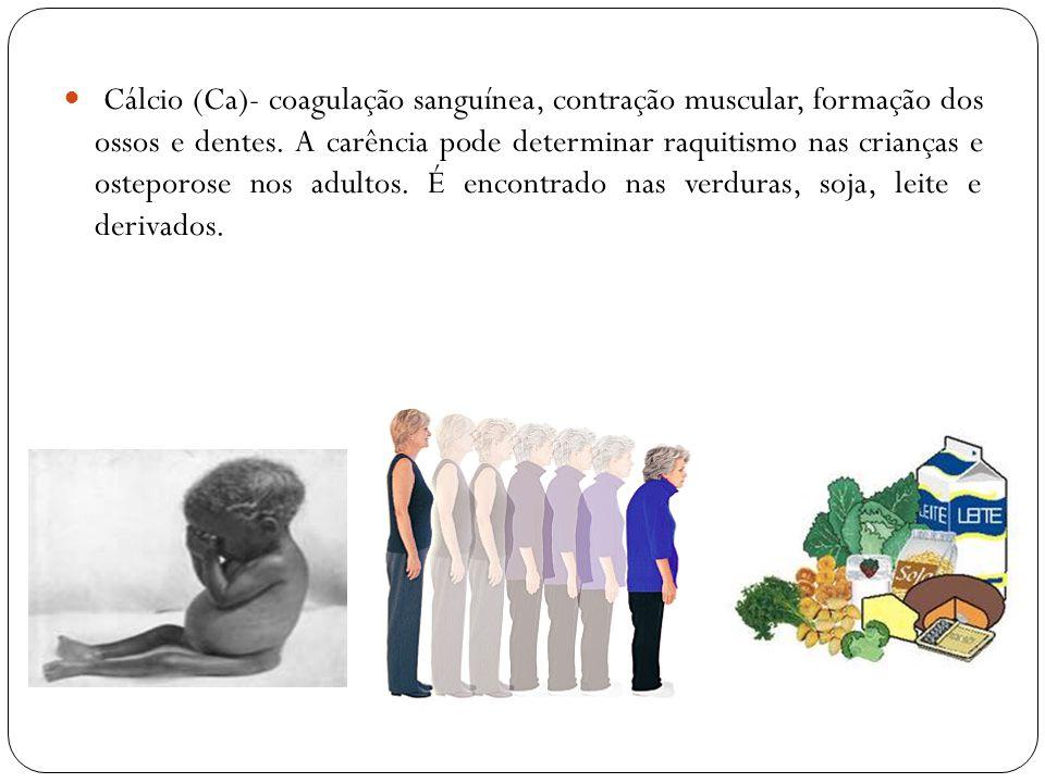 Cálcio (Ca)- coagulação sanguínea, contração muscular, formação dos ossos e dentes.