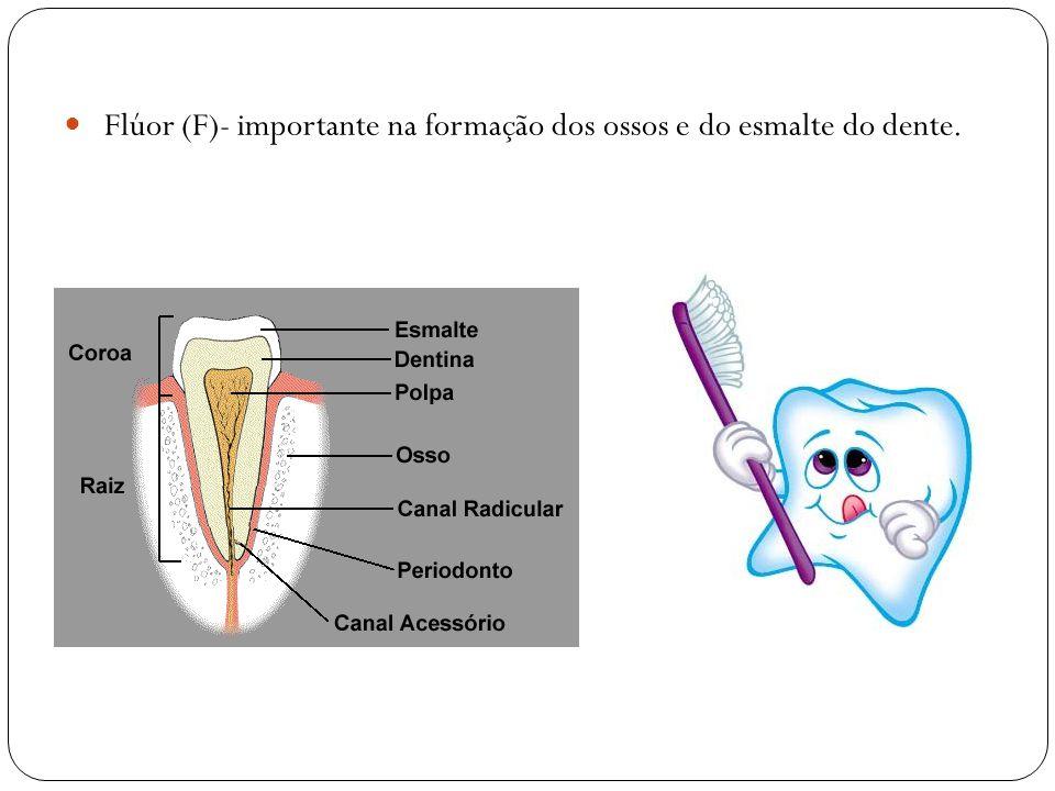 Flúor (F)- importante na formação dos ossos e do esmalte do dente.