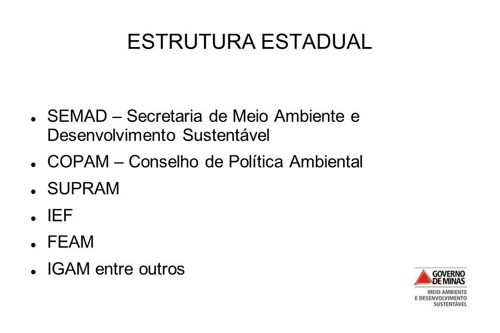ESTRUTURA ESTADUAL SEMAD – Secretaria de Meio Ambiente e Desenvolvimento Sustentável. COPAM – Conselho de Política Ambiental.