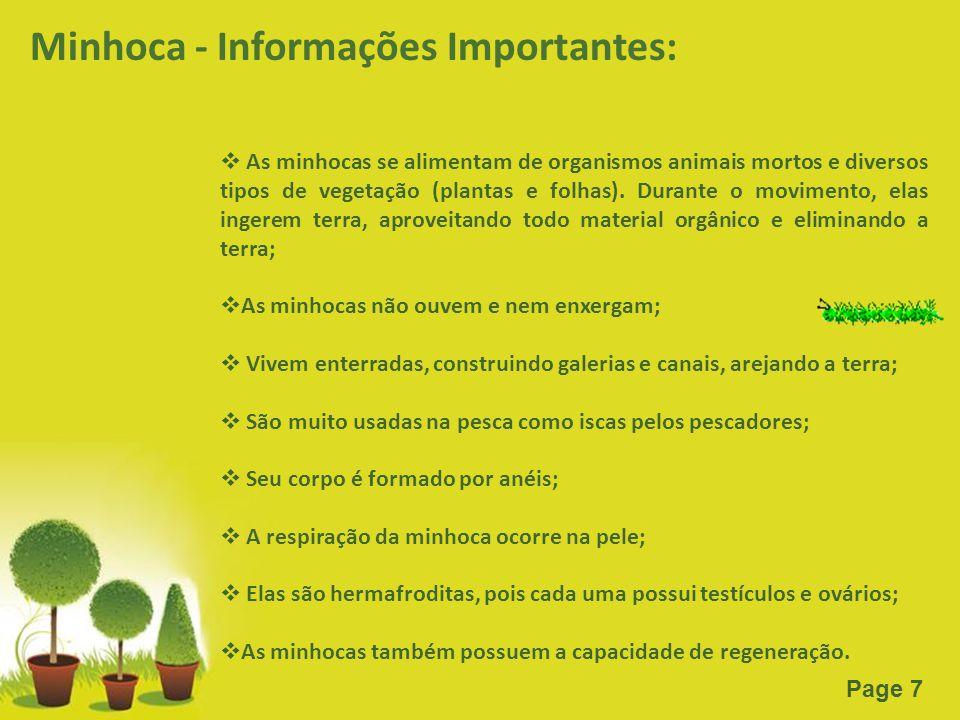 Minhoca - Informações Importantes: