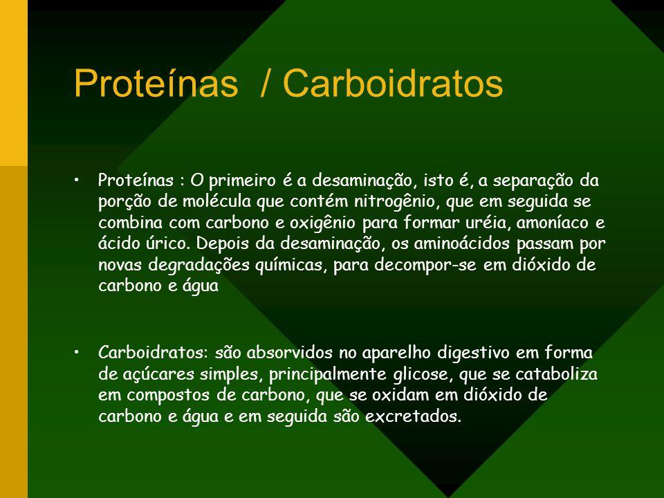 Proteínas / Carboidratos