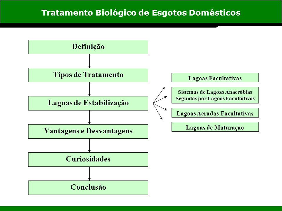 Tratamento Biológico de Esgotos Domésticos