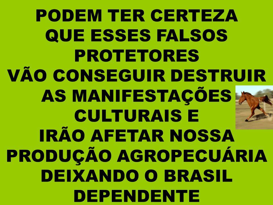 VÃO CONSEGUIR DESTRUIR AS MANIFESTAÇÕES CULTURAIS E