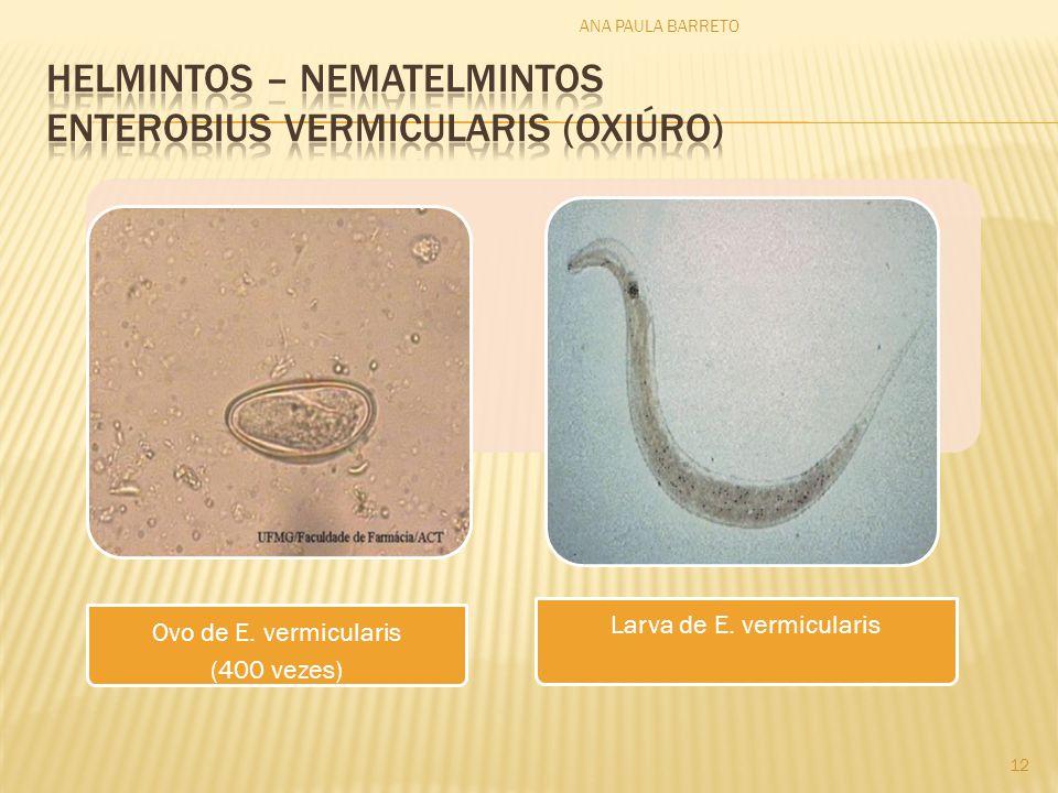 HELMINTOS – nematelmintos enterobius vermicularis (oxiúro)