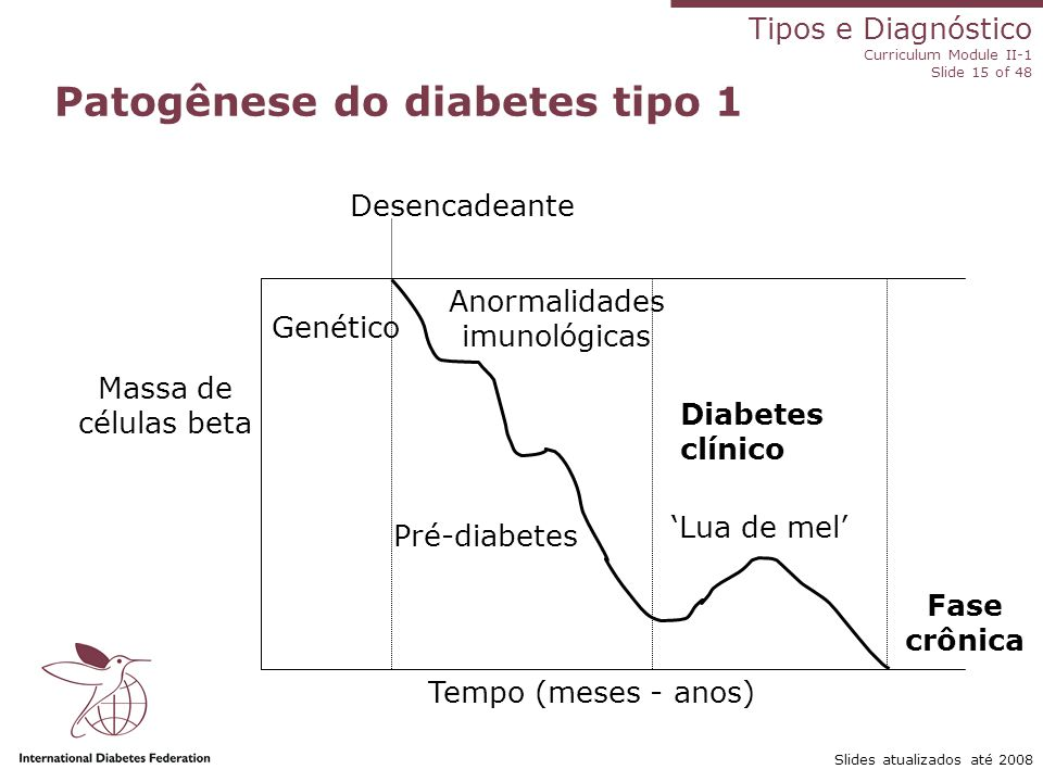 Patogênese do diabetes tipo 1
